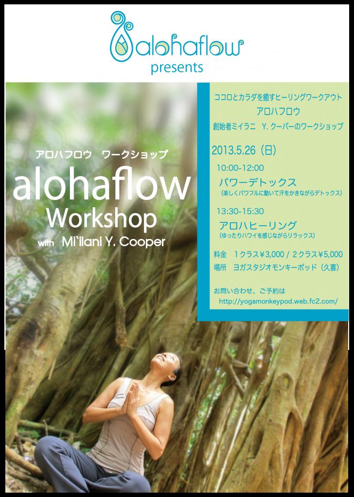 AF_130526wshop_2-01